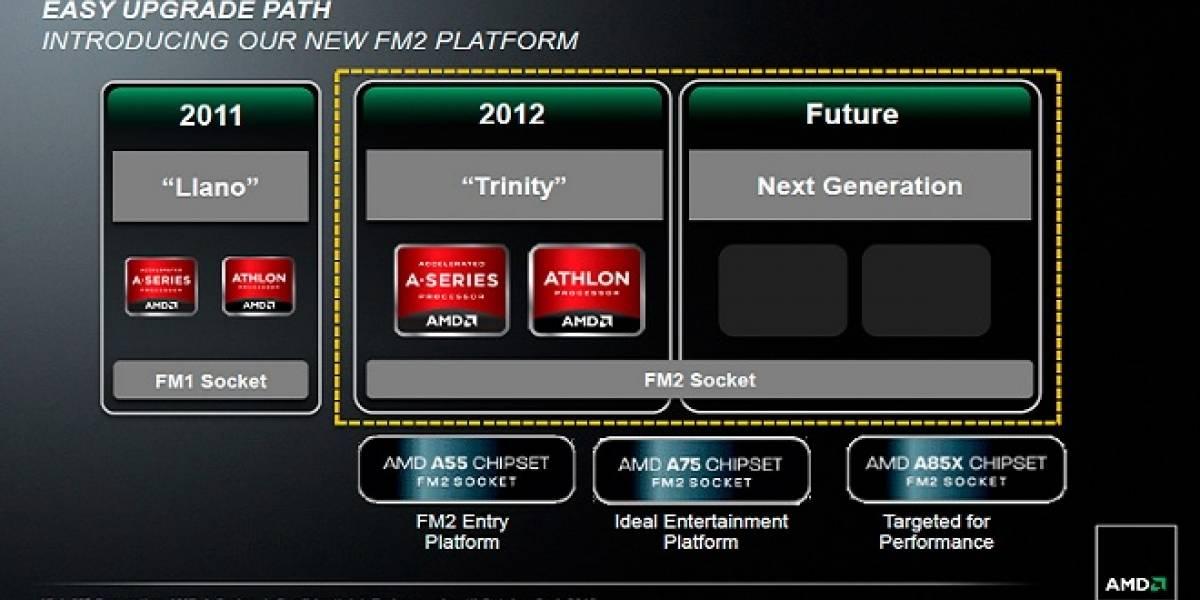 Rumor: Sucesor de Trinity será compatible con los socket FM2 y FM2+