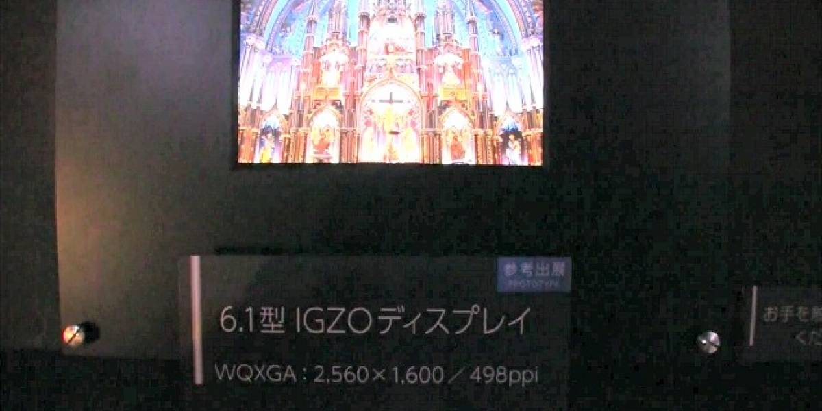 Sharp sorprende con una pantalla de 6,1 pulgadas y resolución de 2560x1600 píxeles