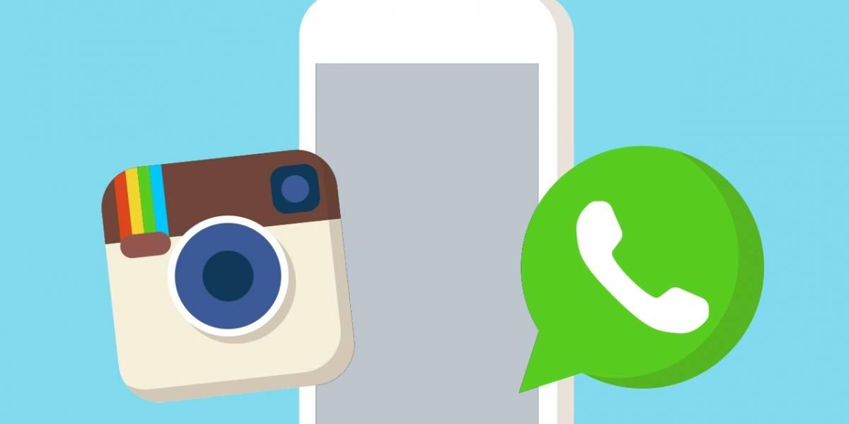 WhatsApp se convirtió en Instagram con su nueva beta