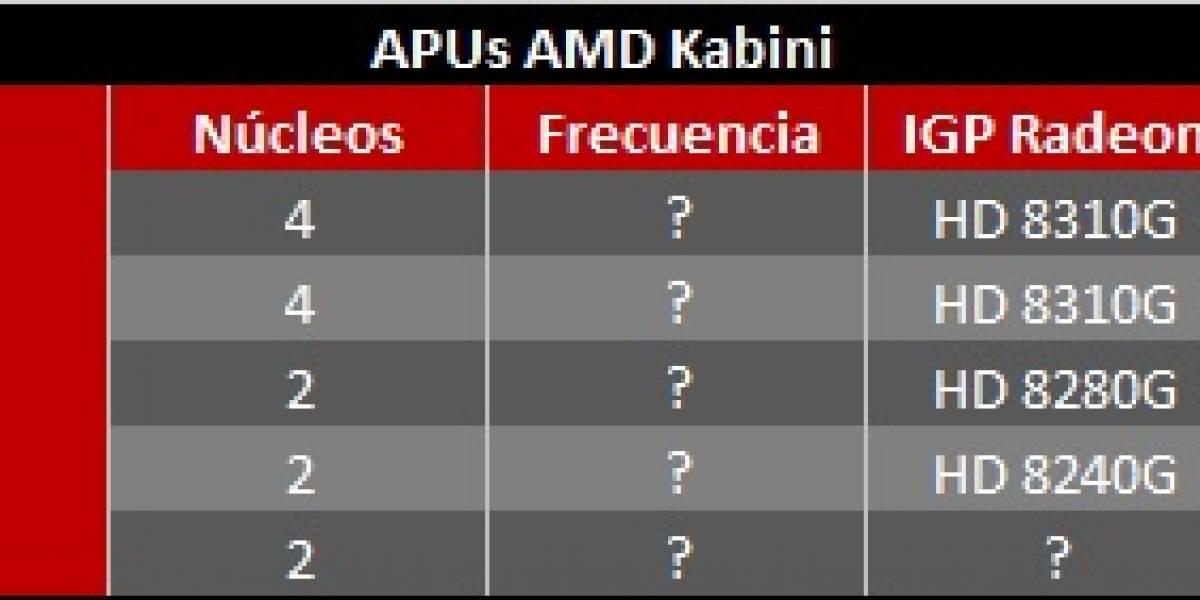 Rumor: AMD lanzará cinco APUs Kabini en junio