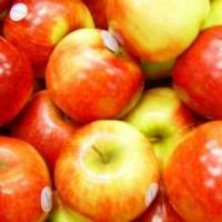 ¿Qué pasa si comes 50 semillas de manzana?
