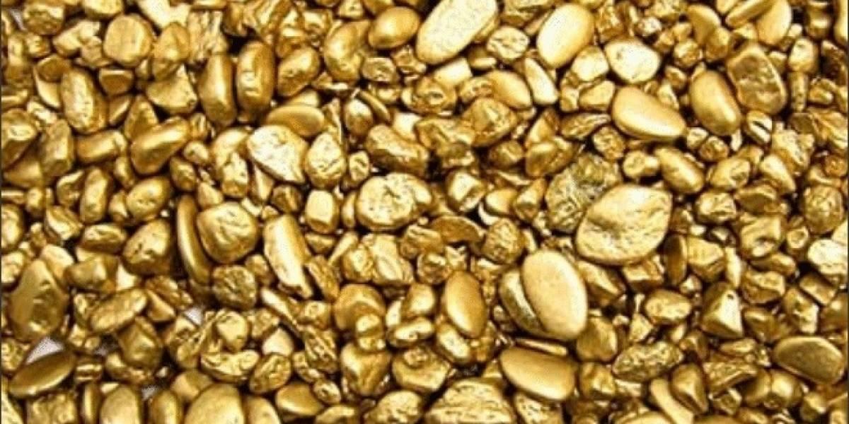 """Delftia acidovorans: La bacteria """"Midas"""" que produce oro"""