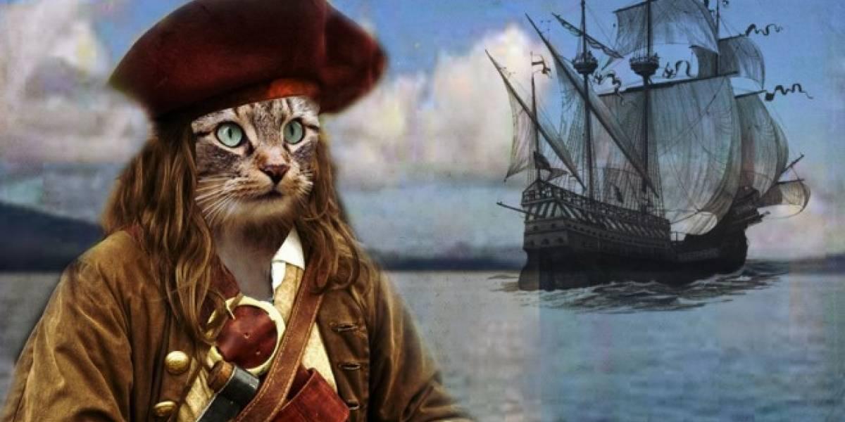 Personas religiosas no simpatizan con la piratería en línea