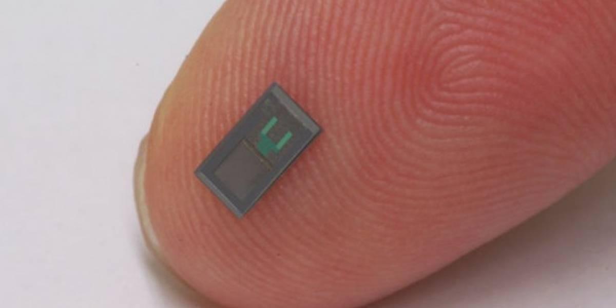 Este sensor implantado en el cerebro se disuelve al cumplir su función