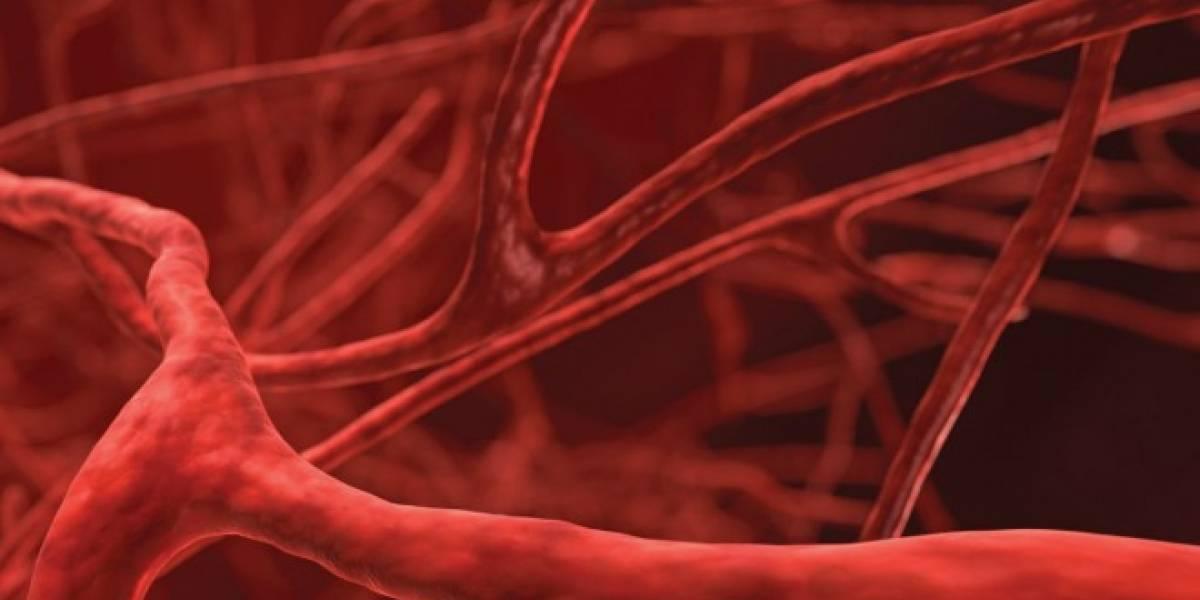 China produce los primeros vasos sanguíneos fabricados en una impresora 3D