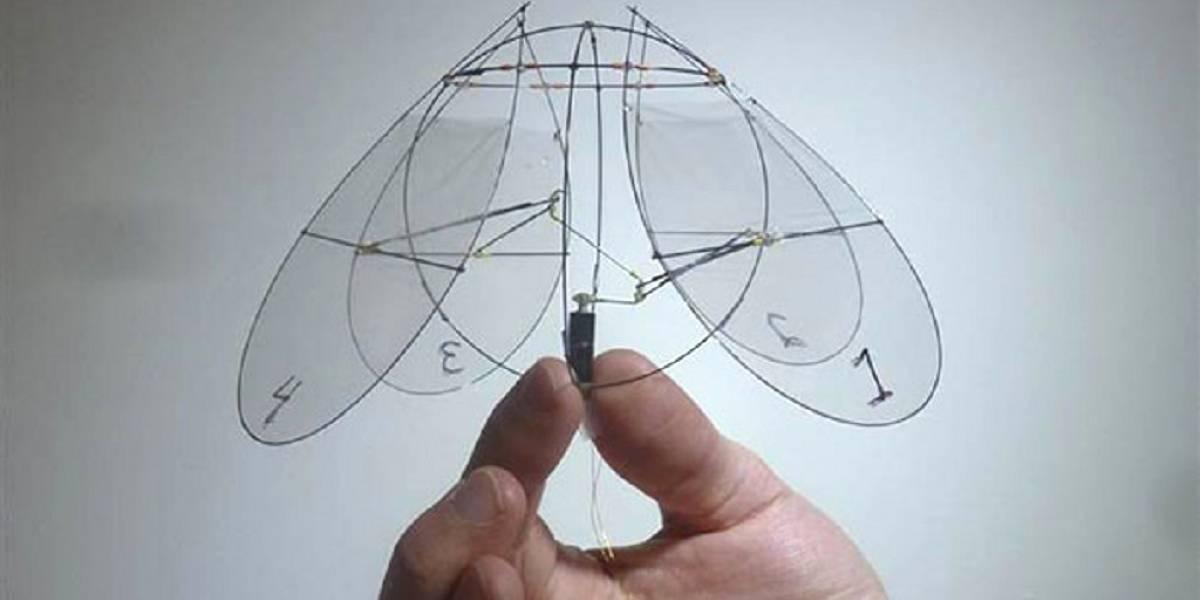 Diseñan robot miniatura que vuela como medusa