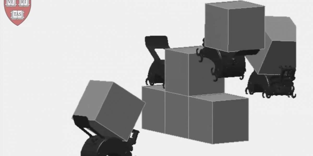 Científicos de Harvard diseñan robots termita