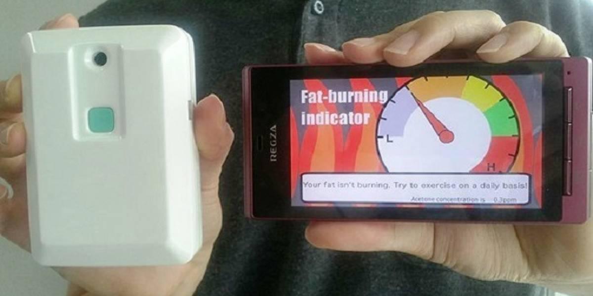 Desarrollan sensor que brinda al instante información sobre la quema de calorías grasas