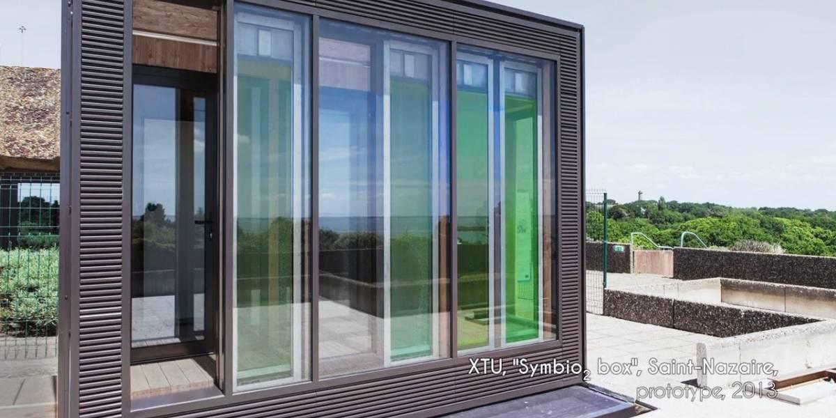 Proyecto cultivo de algas con propósitos energéticos en edificios y fábricas