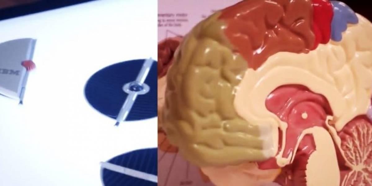 IBM crea software para chips que imitan la función del cerebro humano