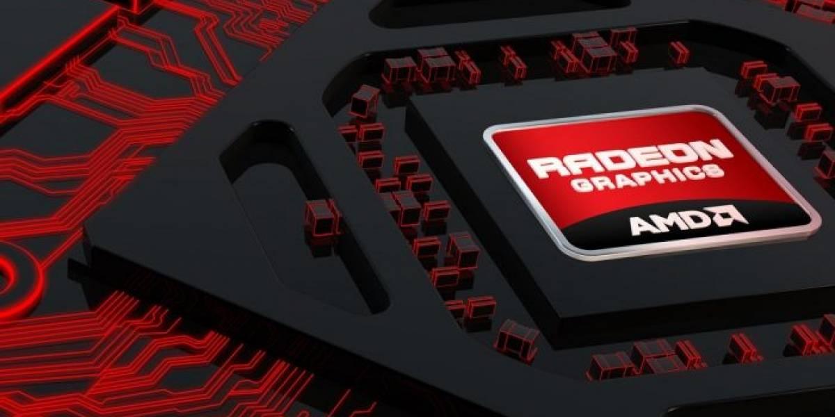 Tarjeta gráfica AMD Hawaii sería vendida a menos de 600 dólares