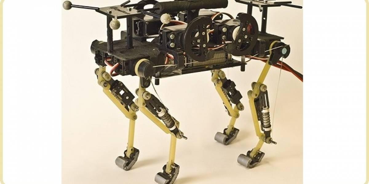 Conoce a Catbot: El robot que camina y corre como un gato