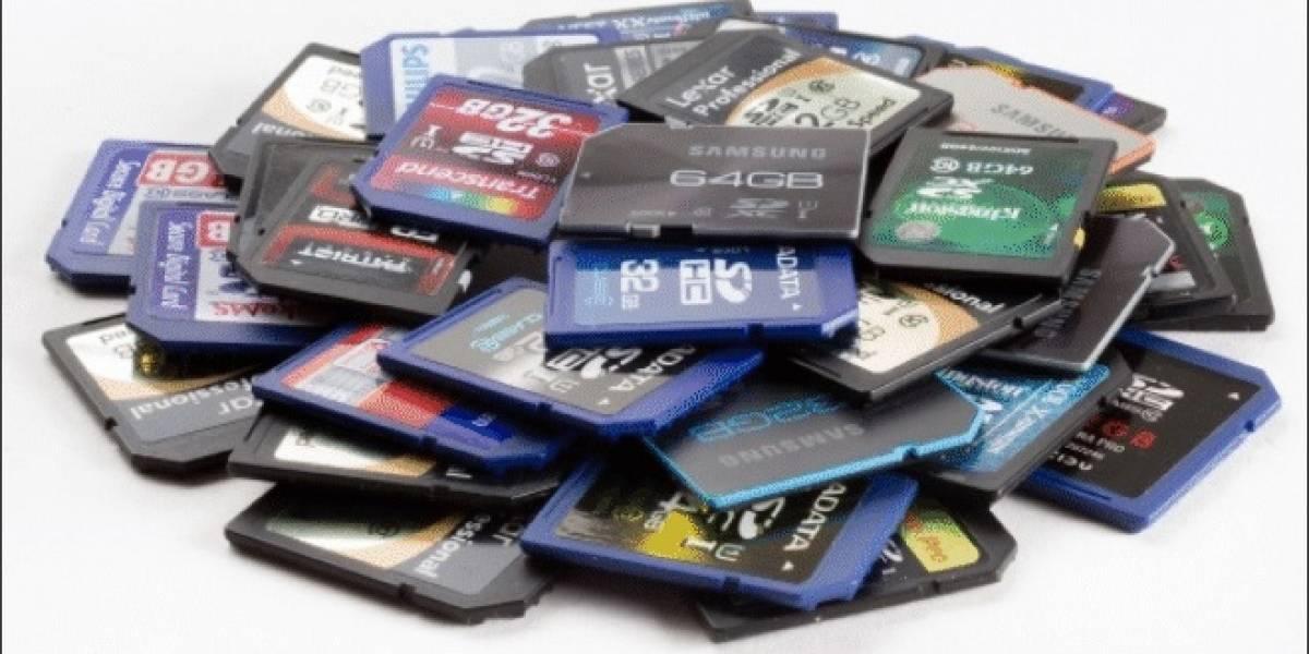 49 tarjetas de memoria SD y MicroSD a prueba