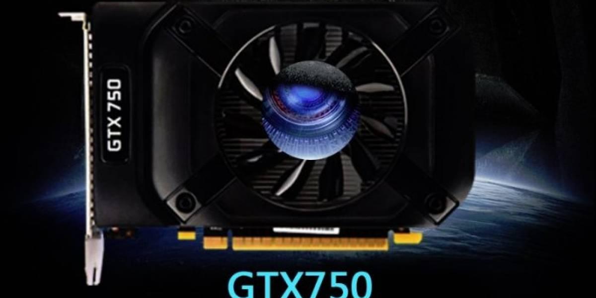 GeForce GTX 750 de referencia posa para la cámara