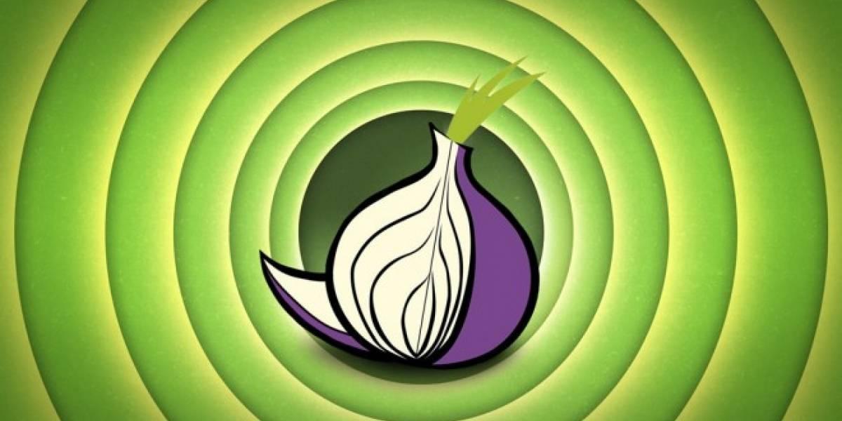 Tor emitió un comunicado sobre el acoso en línea