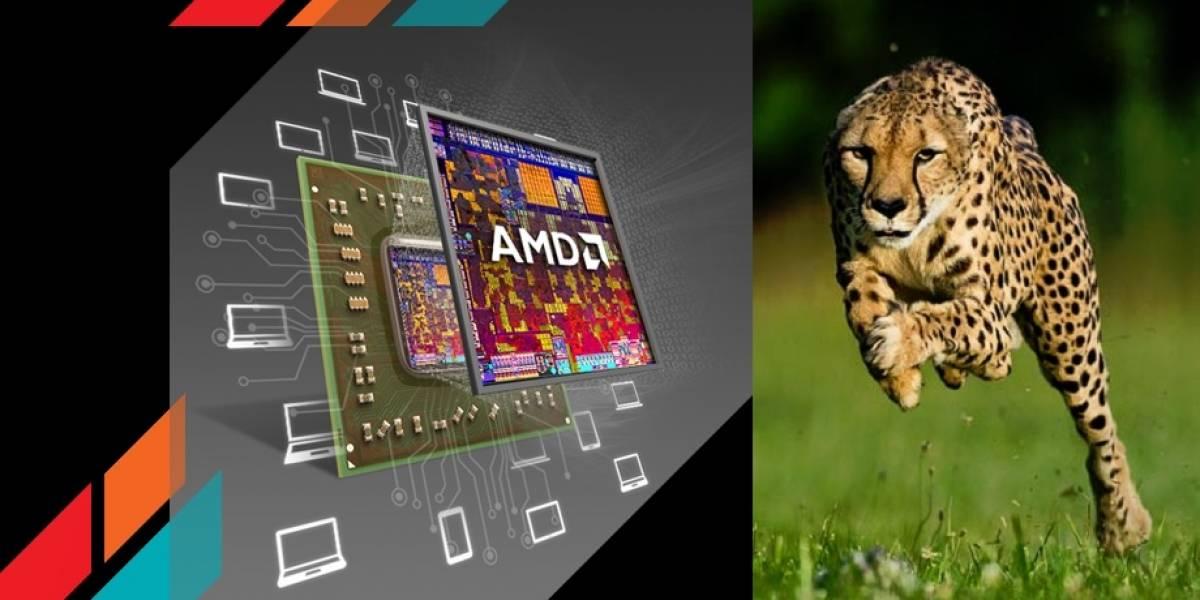 AMD trabaja en su futuro SoC Nolan basado en la micro-arquitectura Cheetah