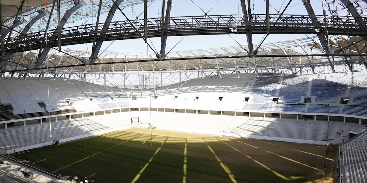 Langostas podrían destruir campos de juego en Mundial de Rusia 2018