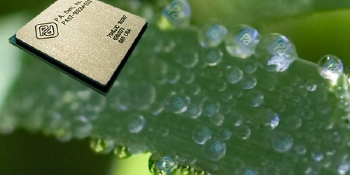 ARM se tiene confianza: Móviles con graficos similares a los de la Xbox