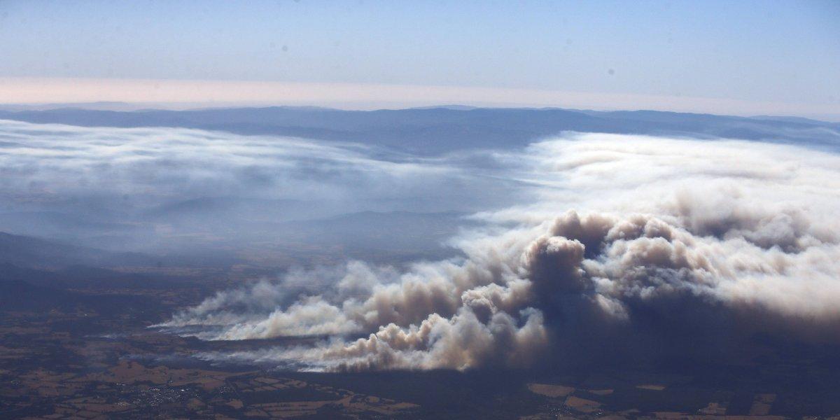 Incendio forestal en Ercilla deja un bombero con el cuerpo quemado y un carro calcinado