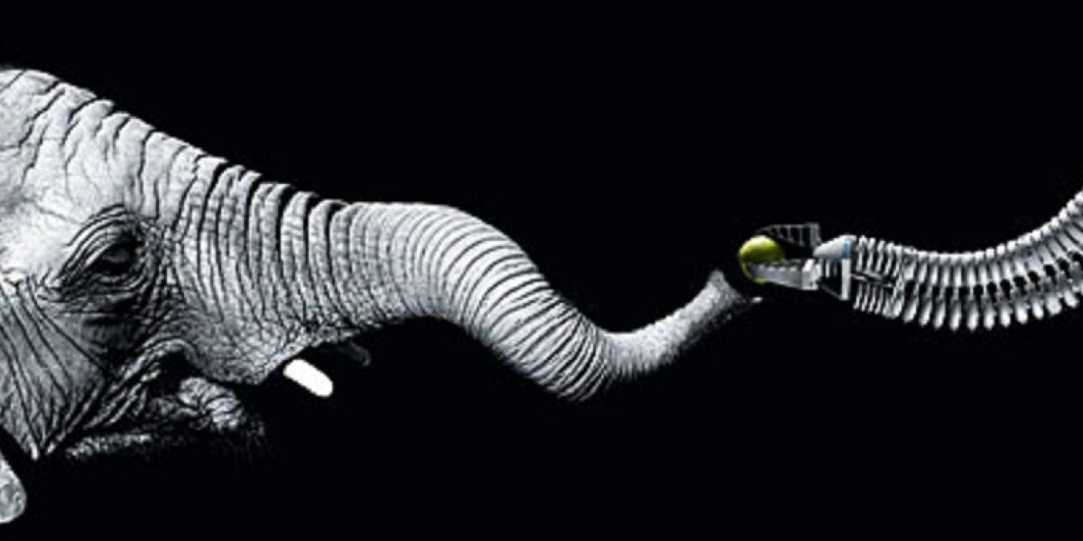 Trompa de elefante robótica aprende movimientos como un niño