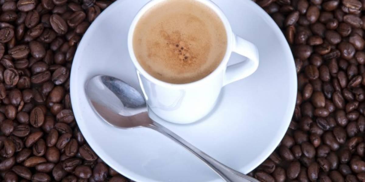 Experimento confirmaría que la cafeína potencia la memoria