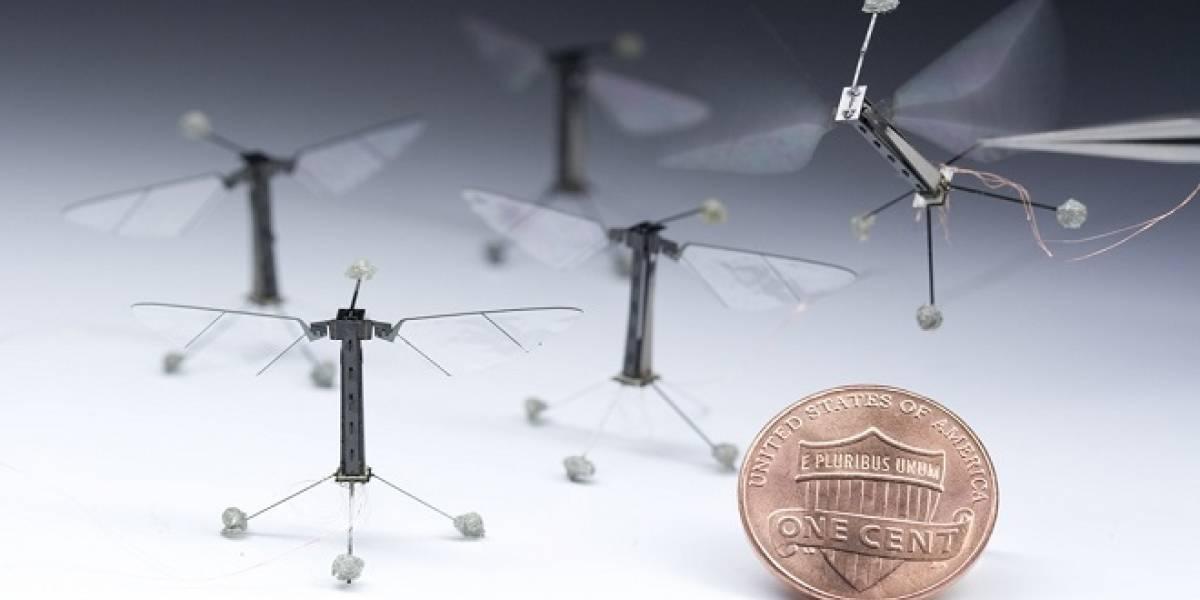 Conoce a RoboBee: El robot mosca, inspirado en la biología de los insectos