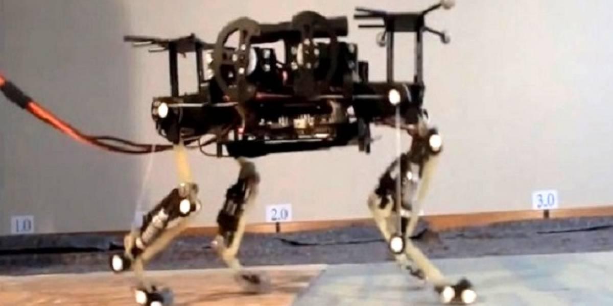 Conoce a Cheetah-Cub: El nuevo robot guepardo