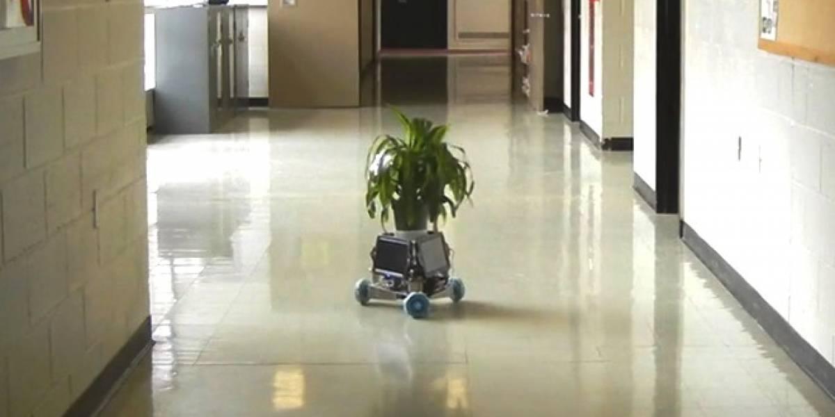 """Conoce a IndaPlant: El dispositivo que convierte las plantas en """"robots"""""""