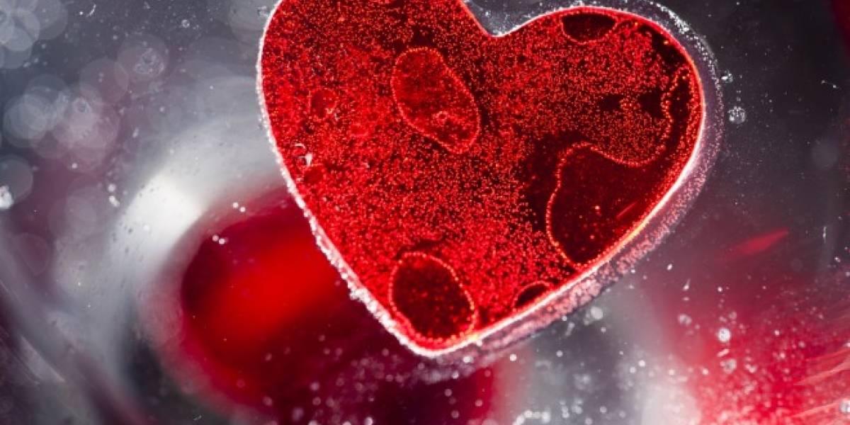 Células madre disminuyen envejecimiento del corazón, revela estudio