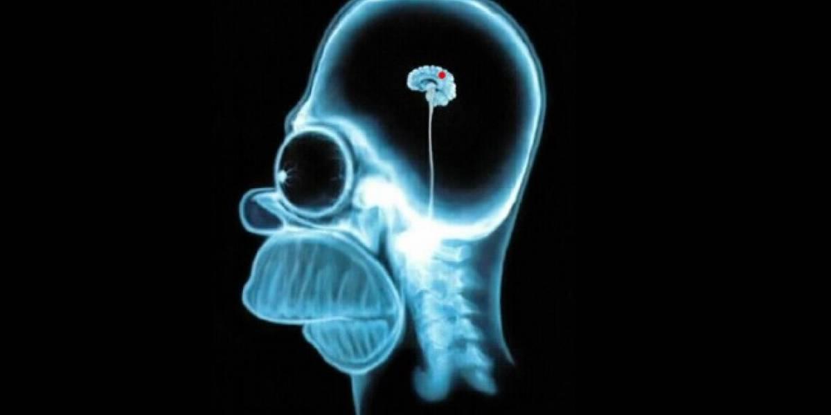 Científicos crean circuito que trabaja igual que la mente humana