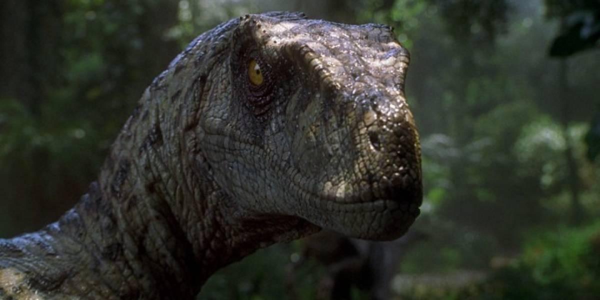 Investigadores descubren al Saurornitholestes, un nuevo raptor con superolfato