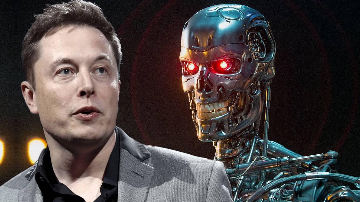 Musk robots