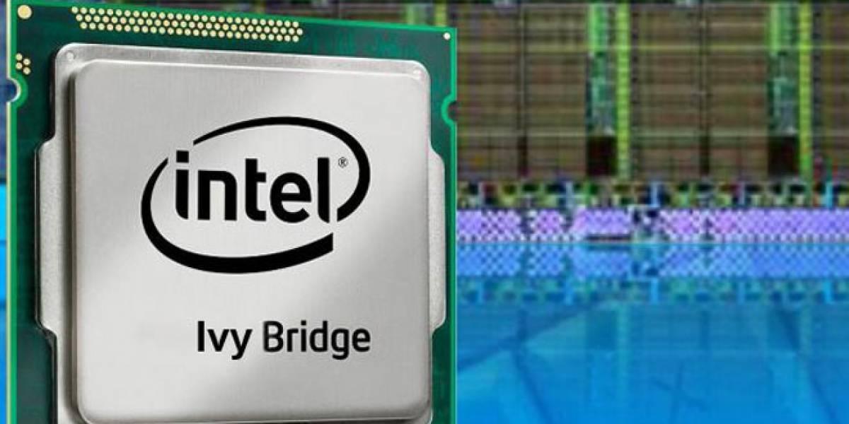 Plataforma con 20 CPU Ivy Bridge y Windows 8 para desarrolladores