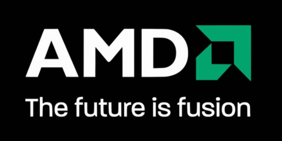 AMD recibe premio como mejor vendedor de componentes en el Reino Unido