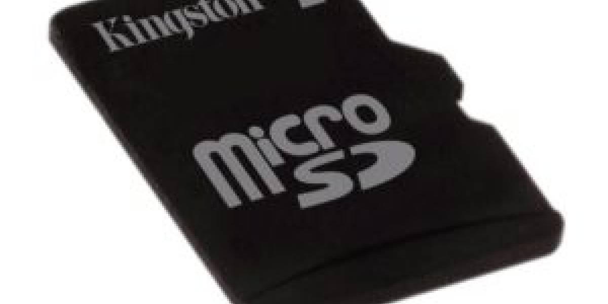 Tarjetas de memoria microSD de 32 GB para el 2010