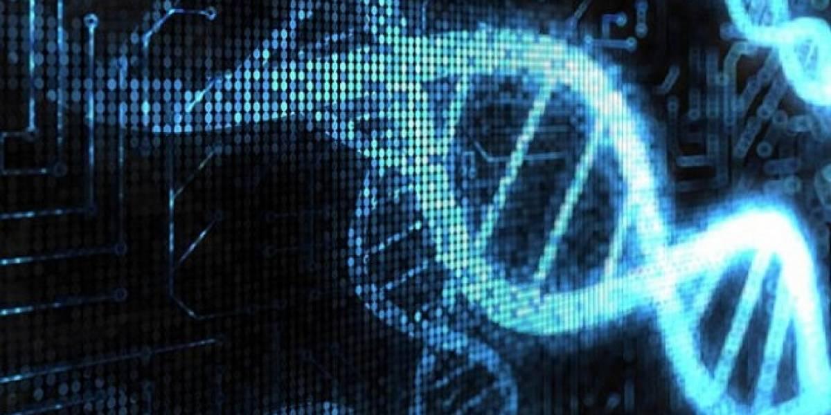Transcriptor: El primer transistor biológico (bio-transistor)