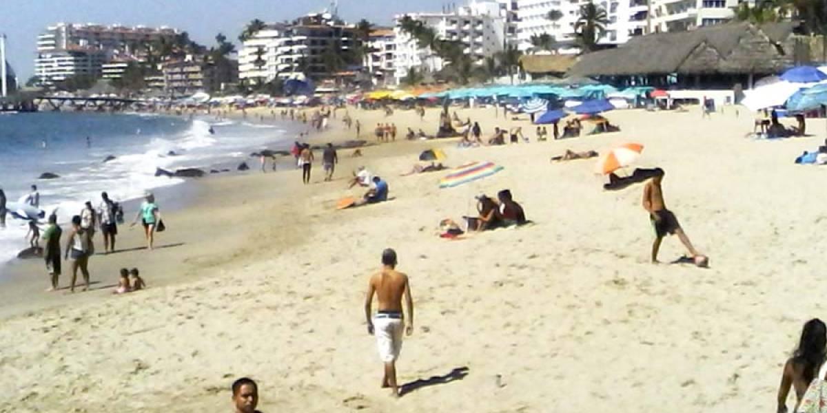 Ante riesgo de intoxicación, vedan moluscos en Puerto Vallarta