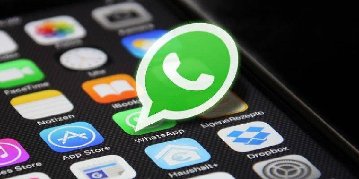 WhatsApp te permite crear stickers