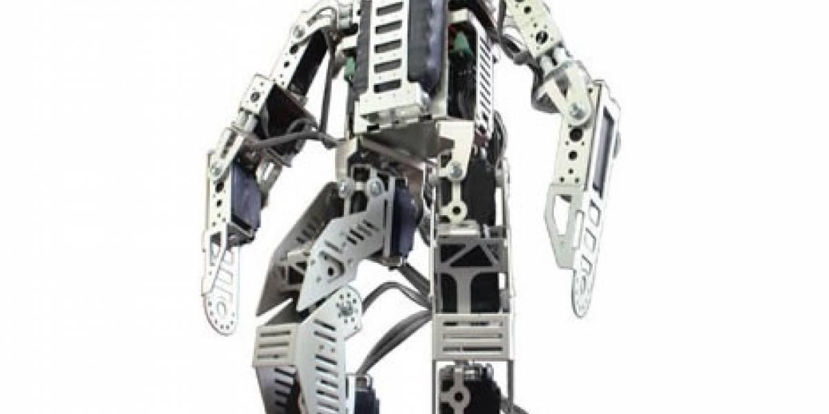 Pirkus-R Type-01 DX: El robot fisonomista