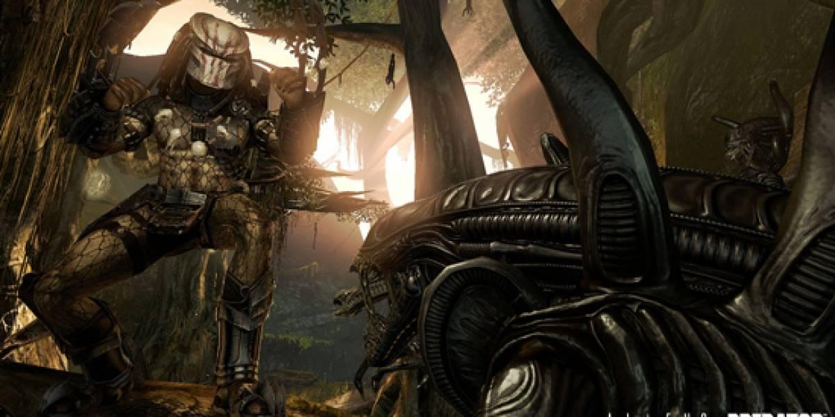 Detalles sobre el componente multiplayer de Aliens vs Predator [gamescom 09]
