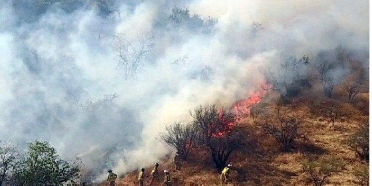 """Onemi declara """"Alerta Roja"""" para la comuna de Lampa por incendio forestal"""
