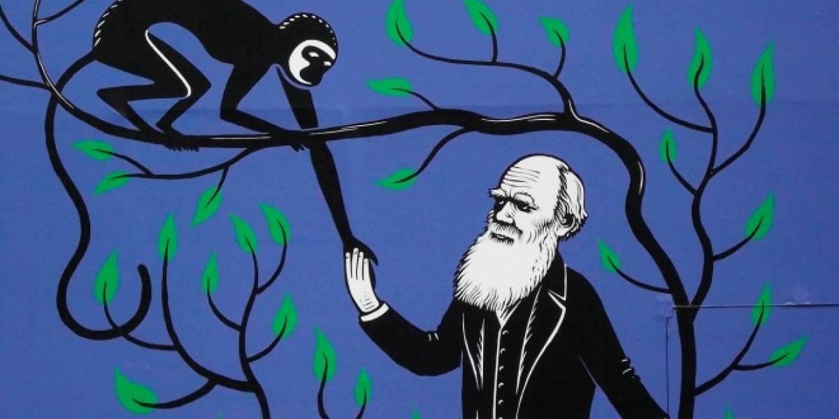 Subastarán carta donde Darwin confirmó su ateísmo