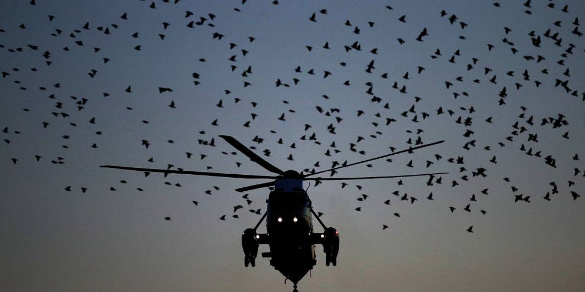 Francia: 5 muertos dejó un choque de 2 helicópteros militares