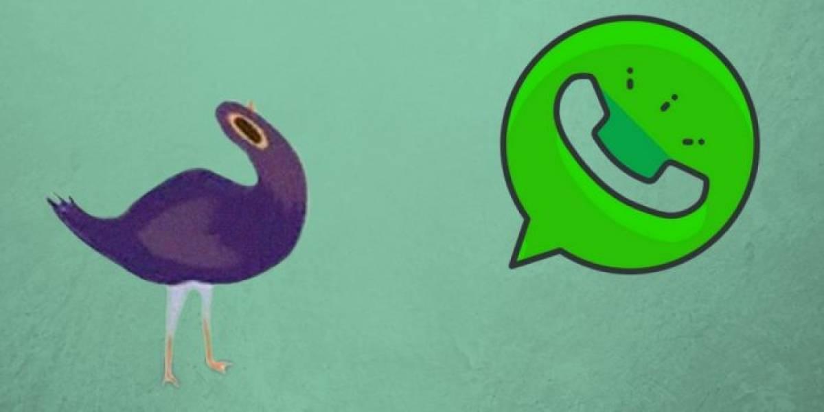 WhatsApp sí permitirá que diseñes tus propios stickers