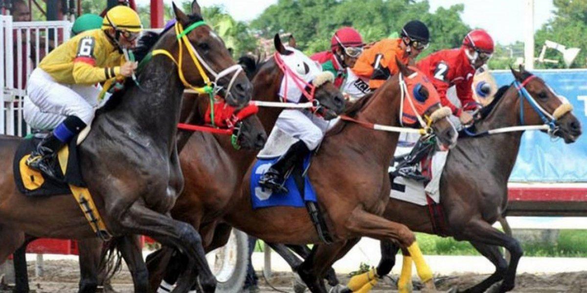 Criadores y fanáticos piden a la gobernadora reapertura de las carreras de caballo