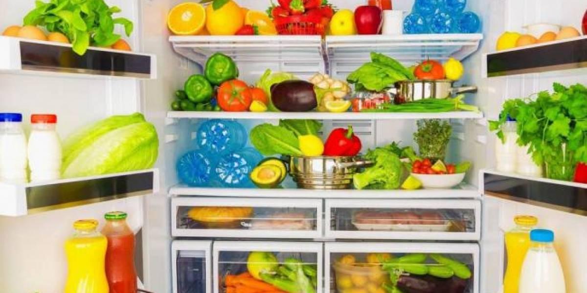 ¿Sales de vacaciones?: Evita que se te echen a perder los alimentos con estos tips