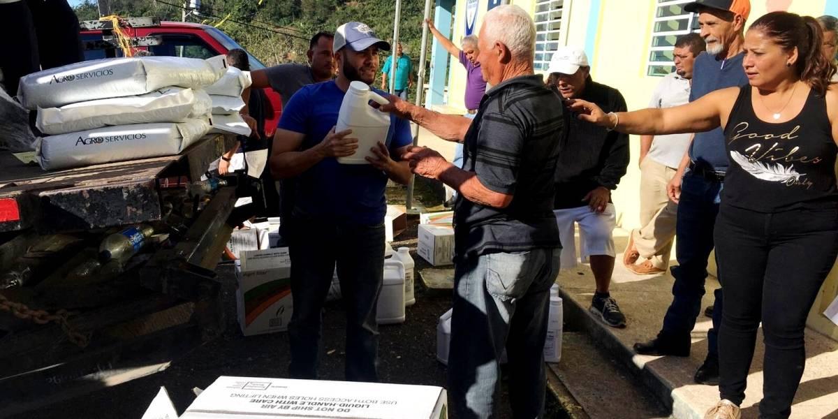 Alcalde de Yauco declara emergencia agrícola