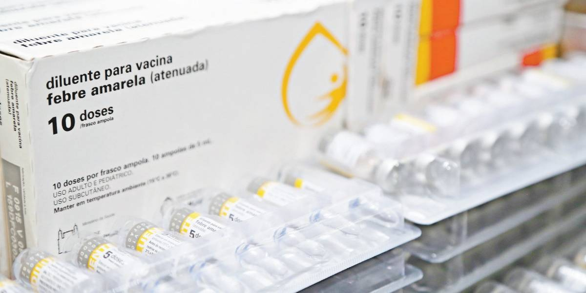 São Paulo promove novo Dia D de vacinação contra a febre amarela; veja onde tomar a vacina