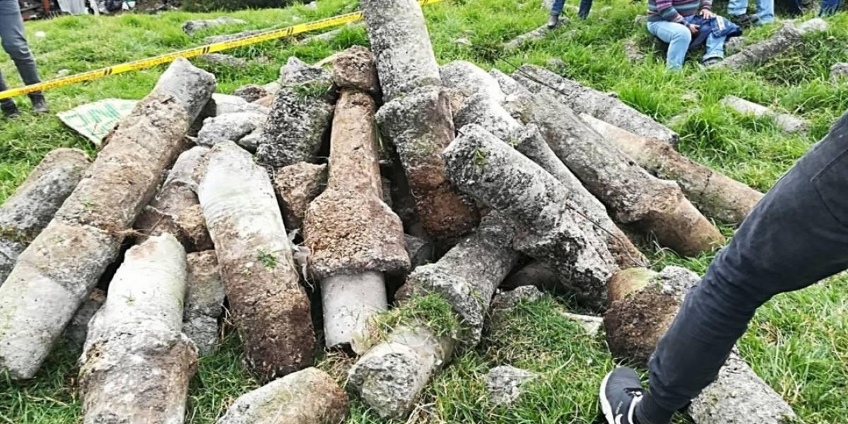 """Ciudadanos denuncian """"cementerio de bolardos"""" en la reserva Thomas van der Hammen"""