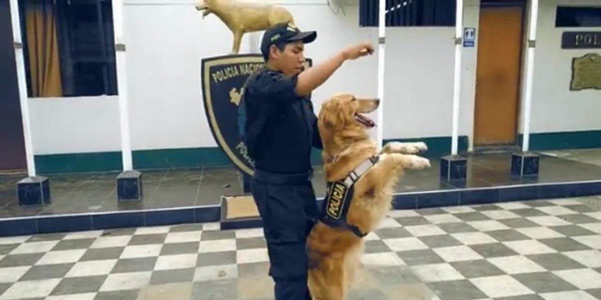 Policía Nacional del Perú sorprende con el reto 'Scooby Doo Pa Pa'